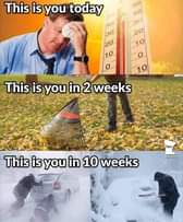 Image may contain: 1 person, text that says 'This is you today 50 40 30 20 10 30 20 o 10 This is you in 2 weeks Ope. This is you in 10 weeks Ope'