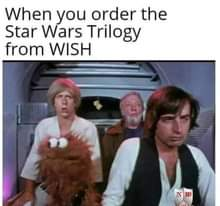 Image may contain: 3 people, text that says 'When you order the Star Wars Trilogy from WISH 感0 演'